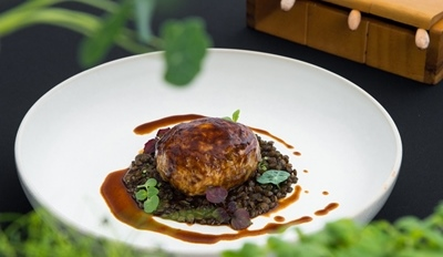 Elements_Challans Guinea Fowl braised with lardons, savoy cabbage and Du Pay lentils